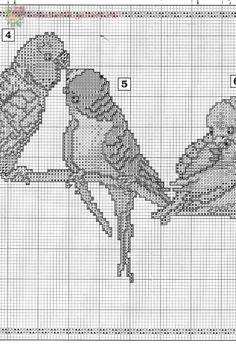 Borduurpatroon Kruissteek Papegaai - Parkiet *Embroidery Cross Stitch Pattern Parrot ~Parkieten op tak 5/8~