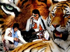 Elvis creation byRiitta