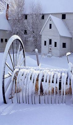 Country Living - winter