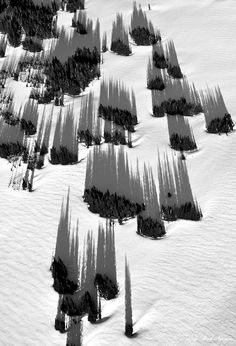 Black & White Photography - snow & shadows - aerial view