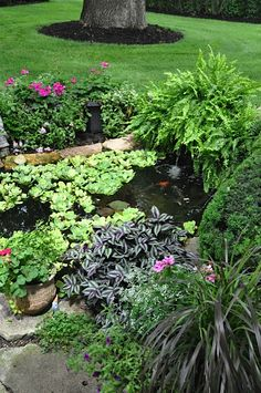 22 best landscaping with feng shui images in 2019 landscaping rh pinterest com