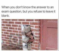 School flow, Exam fever, study life, college life