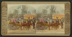 Street Scene, Jacksonville, Fla. From New York Public Library Digital…