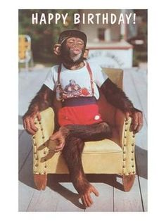 Art Print: Happy Birthday, Dressed Chimp in Armchair : 24x18in