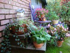 Meeting Jane Krauter | Flea Market Gardening