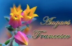 Immagini auguri onomastico Francesco