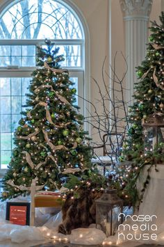 Junior League of Hamilton-Burlington's annual Holiday House Tour of Distinctive Homes is a not to be missed holiday event! Holidays And Events, House Tours, Hamilton, Jr, Christmas Tree, Homes, Holiday Decor, Home Decor, Houses