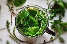 Herbatka z pokrzywy oraz skrzypu