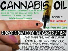 #CannabisOil Cures Cancer! Watch RUN FROM THE CURE New Business Launch for HEMP based products!! Known for it's Medicinal properties, these products will now be available legally and you can become a distributor!!! Join my team for FREE ( limited offer ) secure your spot!!! http://thebuzzlaunch.com Enter Sponsor Code #3960373 Kathy Johnson and join my team!!!