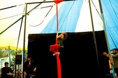 Casamento circo!