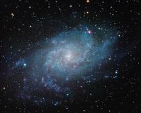 The Triangulum Galaxy by Jeff Johnson.  See: http://stellareyes.com/news/photo-sharing/item/58-sparkling-island-universe-the-triangulum-galaxy.html
