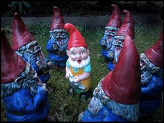 When I finally have my own garden... I will have zombie lawn gnomes.