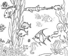 Fishes Underwater Coloring Pages under the sea Pinterest