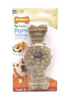 Nylabone Long Lasting Wolf Lamb and Apple Flavored Ring Bone Puppy Dog Treats - http://www.thepuppy.org/nylabone-long-lasting-wolf-lamb-and-apple-flavored-ring-bone-puppy-dog-treats/