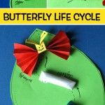 Butterfly+Life+Cycle+Craft