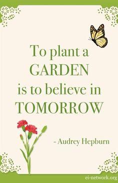 Om een tuin te planten is om te geloven in de toekomst - Audrey Hepburn tuin offerte