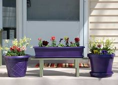 Purchase inexpensive pots and coat with purple spray paint to transform them into a coordinated trio. front-porch-ideas-and-more.com #porch #diy