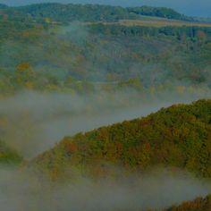 Morgen-Nebel im Siebenbachtal  https://www.facebook.com/Feriendorf.Pulvermaar  #Vulkaneifel #Pulvermaar