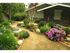 Decomposed Granite Pathway Gardens | Decomposed granite paths and gardens beds instead of front lawn