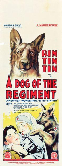A Dog of the Regiment (1927) Stars: Dorothy Gulliver, Rin Tin Tin, Tom Gallery, Hans Joby ~ Director: D. Ross Lederman (Australian Daybill)