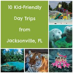 10 Kid-Friendly Day Trips from Jacksonville, FL. I've done some of these already... looking forward to doing them all with my little girl.