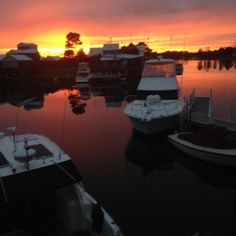 Karin Reed -Beautiful sunrise, waking up on the canals in Paynesville with a view on the best boats in the world