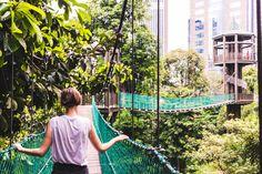 Bukit Nanas in Kuala Lumpur