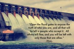 """Open the flood gates to expose the truth of who you are; and all that will be left is people who accept it. All others will flee; and you will be left with only those that are allies."" Quote by Teal Swan (The Spiritual Catalyst)"
