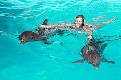 nadar con delfines!!