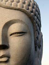 Counselling Boeddha Coaching
