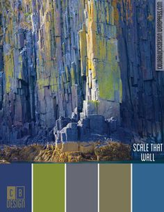 Scale that Wall | Color Blocks Design