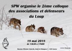 Le Klan du Loup au Colloque des associations et défenseurs du Loup