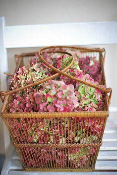 ideas for basket flower decoration ana rosa Hortensia Hydrangea, Hydrangea Garden, Pink Hydrangea, White Hydrangeas, Love Flowers, My Flower, Dried Flowers, Beautiful Flowers, Beautiful Things