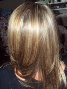 Blonde highlights and light brown low lights with a layered cut