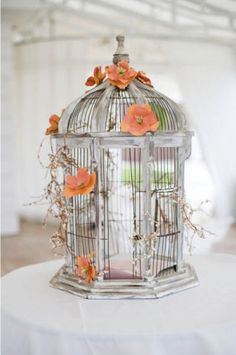 orange flowers cage bird