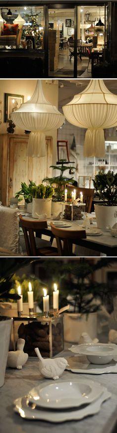 Evergreens in Crocks ~ Trendenser