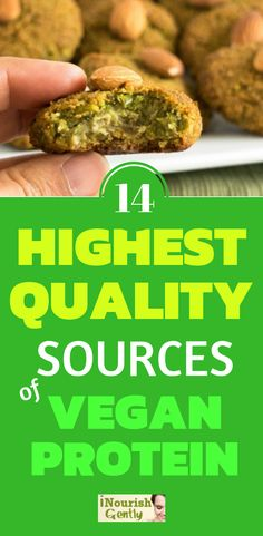 14 BEST SOURCES OF HIGH QUALITY #VEGAN #PROTEIN TO FUEL YOUR BODY WITH
