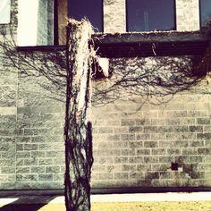 on the wall II Ottawa, Antonio Mora, Montreal, Wall, Artwork, Rio De Janeiro, Work Of Art, Auguste Rodin Artwork
