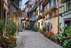 Von Weinbergen umgeben und an grünen Hügeln angelehnt ist Eguisheim eine mittelalterliche Ortschaft, deren konzentrische Gassen die Architektur der liebevoll mit Blumen geschmückten Fachwerkhäuser bestens zur Geltung bringt.<br><br> Diese Begeisterung für Blumenschmuck wird seit 1985 mit der höchsten Auszeichnung beim Grand Prix National du Fleurissement belohnt.<br><br> Sie werden in diesem originellen Dorf Brunnen, Dinghöfe, eine Kirche aus gelbem Sandstein, die eine...
