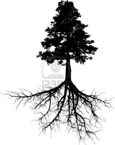 Google Image Result for http://us.123rf.com/400wm/400/400/cla78/cla781111/cla78111100008/11136362-silhouettes-of-tree-with-its-roots.jpg