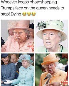 funny hilarious photos - funny hilarious & funny hilarious memes & funny hilarious lol & funny hilarious quotes humor & funny hilarious memes so true & funny hilarious memes laughing & funny hilarious memes sarcasm & funny hilarious photos Humor Videos, Memes Humor, Ecard Memes, Funny Humor, Best Funny Photos, Funny Pictures, Lol Photos, Animal Pictures, Hilarious Photos