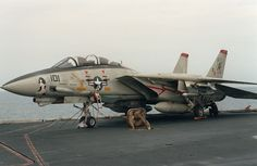 "F-14A Tomcat from VF-41 ""Black Aces"" aboard USS Theodore Roosevelt CVN 71 in 1991 during Operation Desert Storm."