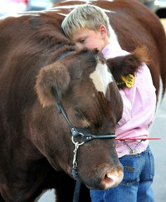 Austin Huwa, 10, of Roggen, rests against the ample side of his steer, Tex, while waiting to sell the animal during the Junior Livestock Sale. Austin said he named the steer Tex because the white mark on his forehead looks like the state of Texas. Photo by Chris McLean (Aug. 28, 2012)