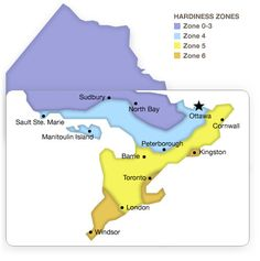 Climate zones and planting dates for vegetables in ontario for Gardening zones ontario