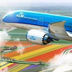 KLM Royal Dutch Airlines _______________________________ Boeing 787 Dreamliner PH-BHC