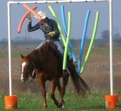 Horse obstacle with pool noodles. This is an excellent idea for getting your horse calmer and more confident!