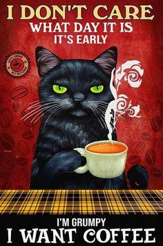 Crazy Cat Lady, Crazy Cats, I Love Cats, Cool Cats, Bastet, Cute Animals, Funny Animals, Black Cat Art, Cat Posters