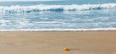 Waves, Outdoor, Littoral Zone, Outdoors, Outdoor Living, Garden, Wave, Beach Waves