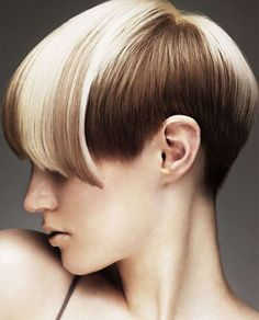 Tremendous 2017 Exotic Hair Color Ideas For Short Hair Short Hairstyles Will Hairstyle Inspiration Daily Dogsangcom