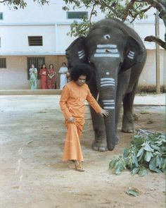 """""""See ra, see!"""" Swami commented looking at the boys as He sat in the car. """"She loves Swami so much that she can feel Swami's feelings. She came to Swami when she was a small baby, so many years have passed, but see? Her love has only increased – expansion love. That is devotion."""" Sathya Sai Baba, Healing Words, Om Sai Ram, Hindu Deities, Small Baby, Gods And Goddesses, Love And Light, Animal Kingdom, Compassion"""